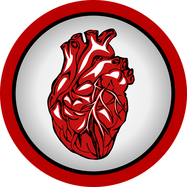 Cardiac Imaging Software Market Overview 2019, Global Industry Analysis, Size, Share, Technology Trends, Latest Developments, Top Company Profile, Regional Forecast to 2023