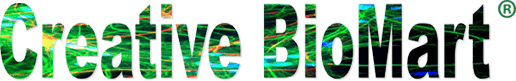 Creative BioMart Updates Its Cell & Tissue Lysates Portfolio for Scientific Research