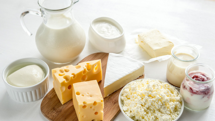 Lactose Intolerance Treatment Market 2019: Growing use of Lactose Intolerance Treatment in the Pharmaceutical Industry likely to boost the market growth Forecast 2023
