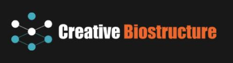 Creative Biostructure Has Updated Its NMR Services for Biopharmaceutical Development