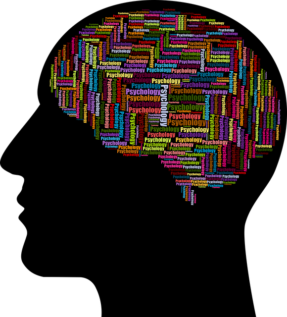 Mental Health Software and Devices Market Global Overview 2019, New Technology Development Trends, Industry Growth Rate, Business Opportunities, Top Company Profiles, Regional Forecast to 2023