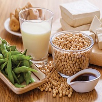 Soy Food Products Market Research Capital expenditure, SWOT Analysis including key players Hain Celestial Group, Miracle Soybean Food International, Nordic Soy Oy, Freedom Food Group