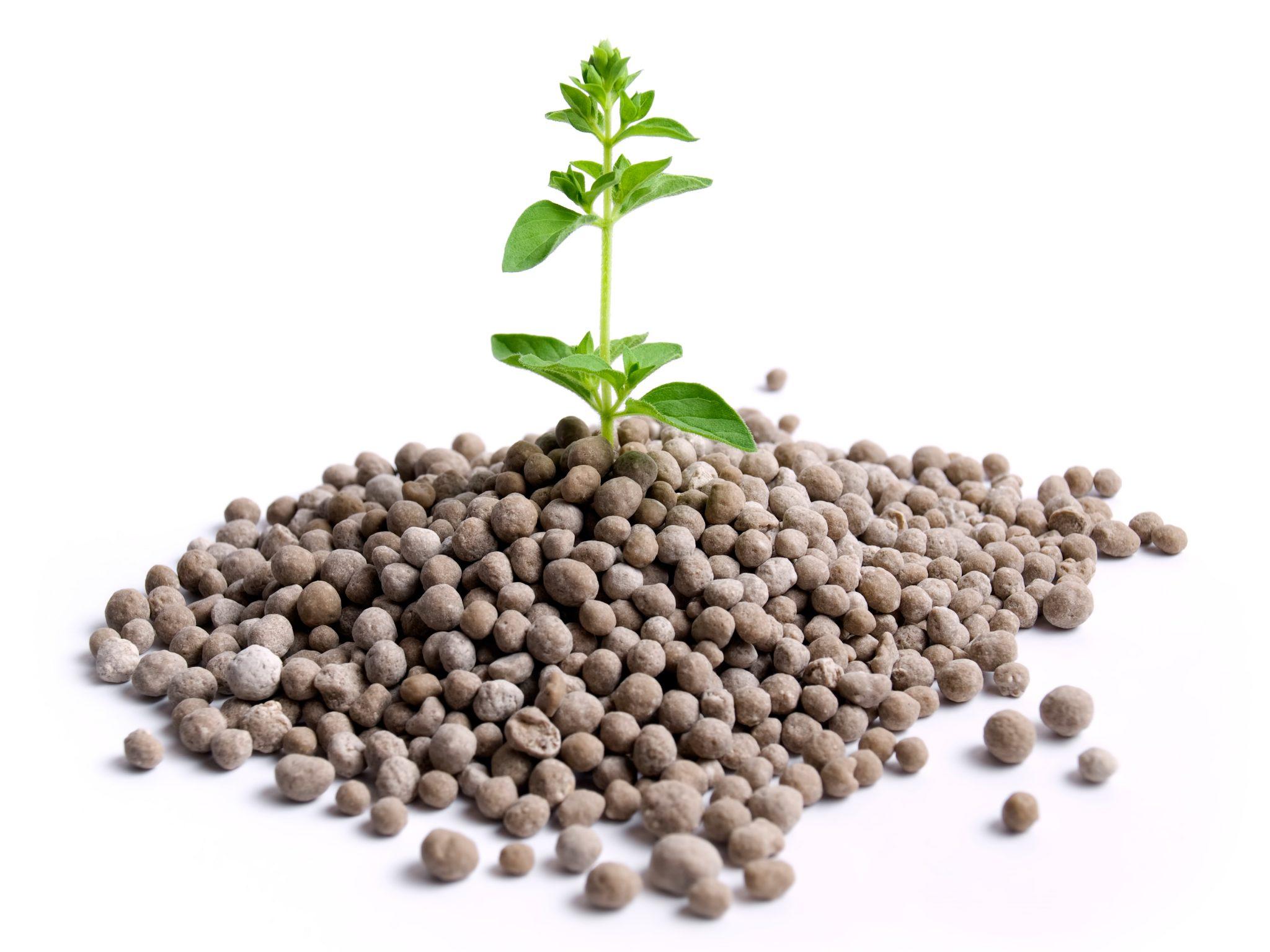 Global Fertilizer Additives Market Research Report Analysis 2019 Focusing on Top Companies like Solvay, Calnetix Technologies, LLC., Cameron Chemicals, Europiren B.V., Golden Grain Group Limited.