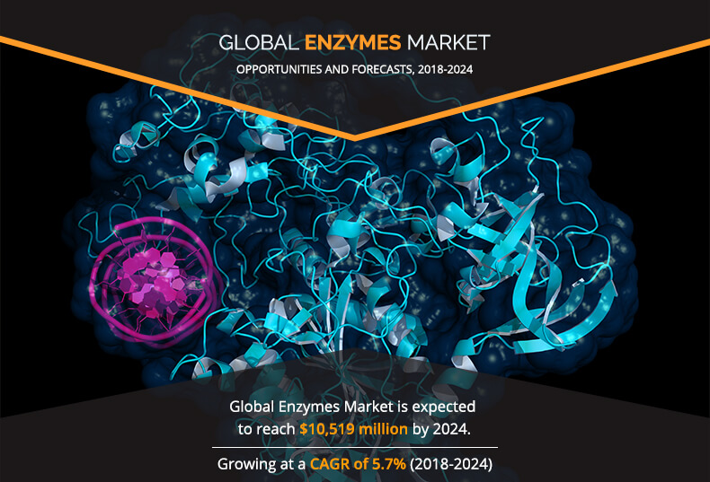 Enzymes Market Has Huge growth at CAGR of 5.7% upto 2024| Top 3 players are Novozymes A/S, Koninklijke DSM N.V., DowDuPont