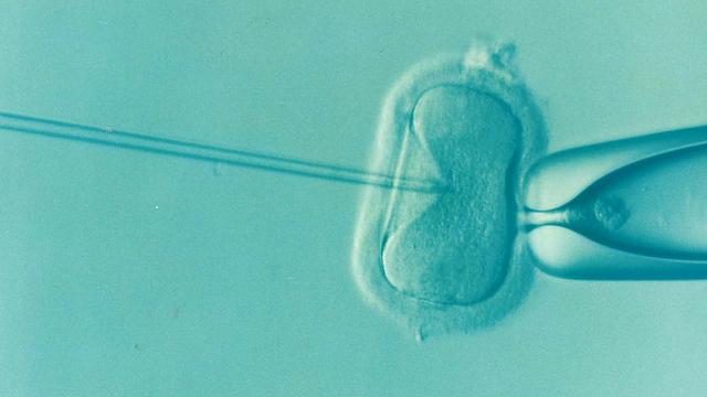 Infertility Market Global Size, Share, Outlook 2019, Industry Growth Rate, Top Companies Statistics, Demand Overview, Regional Analysis, IVF Trends