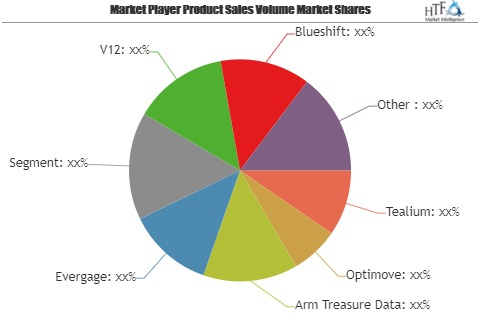 Why Customer Data Platform (CDP) Software Market fastest growth segment should surprise us? | FullContact, Ensighten, Lytics,