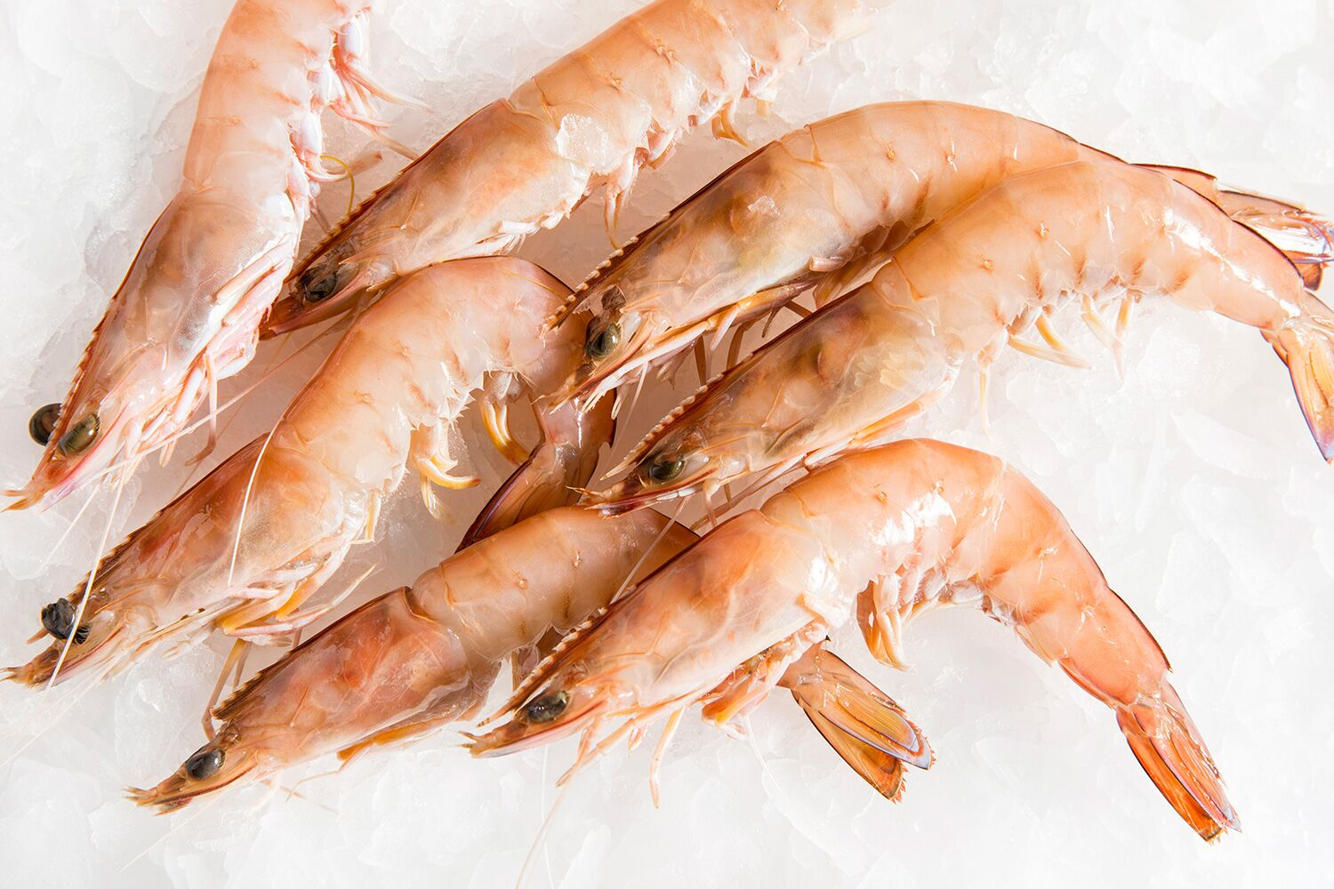 Prawn Market Report, Global Industry Overview, Growth, Trends, Opportunities and Forecast 2019-2024
