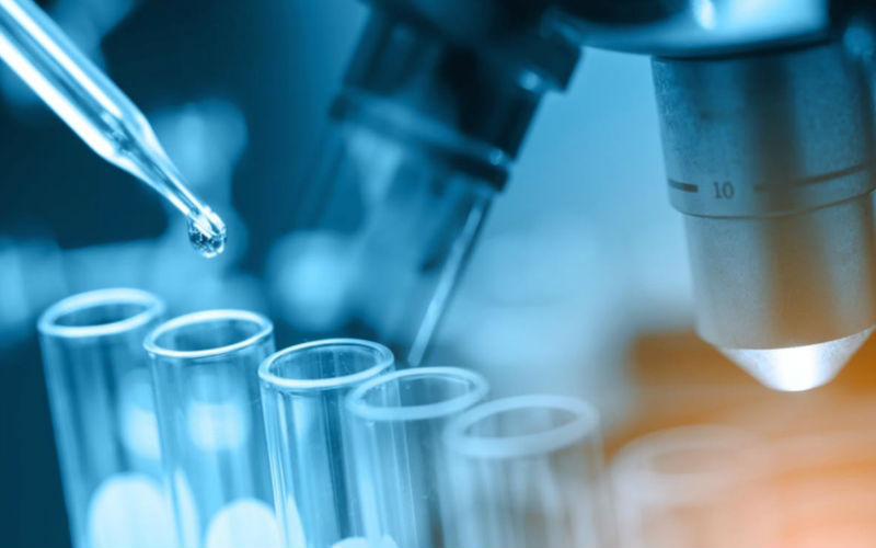 High-Performance Polyamide Market Analysis, Key Growth Drivers, Challenges, Leading Key Players Review, Demand and Upcoming Trend by Forecast to 2023