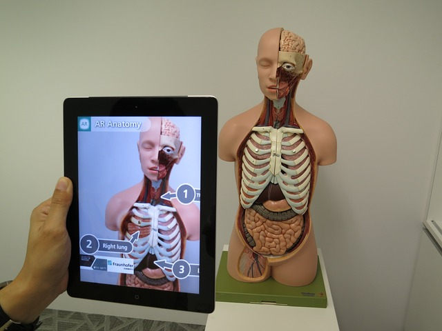 Augmented Reality in Healthcare Market 2019, Emerging Technology Trends, Global Industry Size, Share, Growth, Analysis, Competitive Landscape, Regional Forecast to 2023