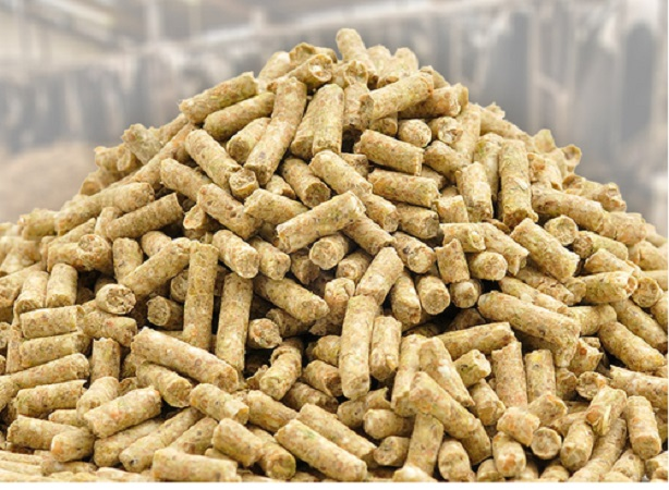 Animal Feed Additives Market on Target to Reach $31,387 Million by 2025, It is grow at a CAGR of 6.0% from 2018 to 2025