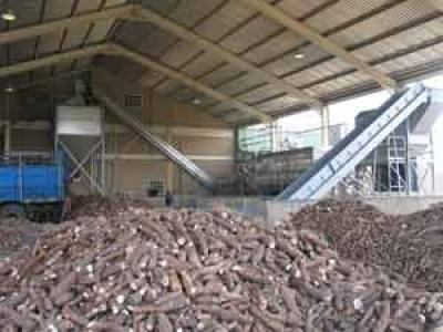 Cassava Processing Market Report, Global Industry Overview, Growth, Trends, Opportunities and Forecast 2019-2024