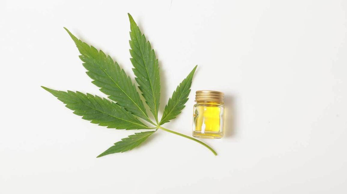 CBD Massage Oil Global Market By Top Key Players, Size, Segmentation, Projection, Analysis And Forecast To 2024