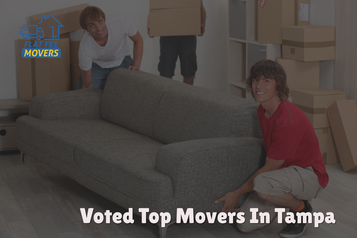 Flat Fee Movers Tampa Voted Top Moving Company In Tampa