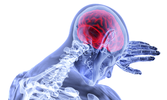 Brain Monitoring Market Share, Size, Trends 2019 Global Industry Segments, Growth, Leading Players, Regional Analysis with Global Forecast To 2022