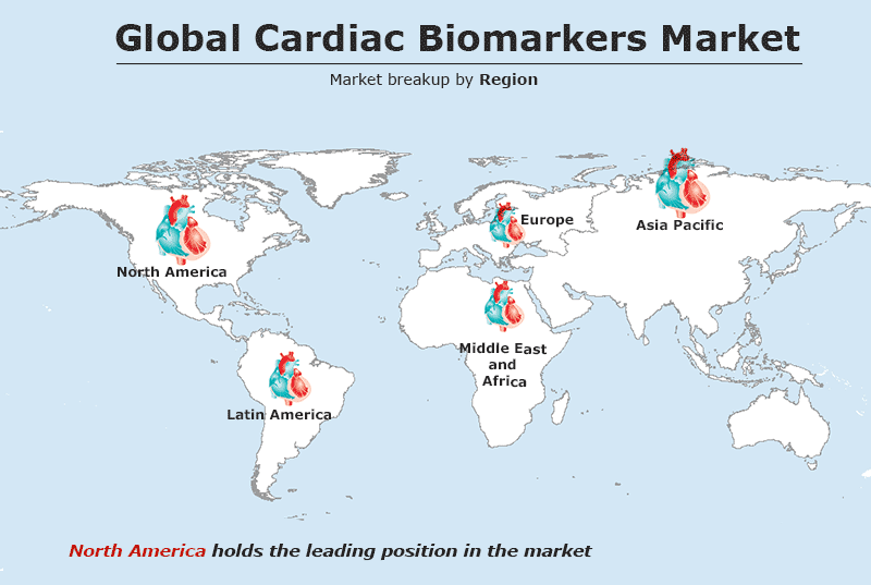 Cardiac Biomarkers Market to Reach US$ 11.6 Billion by 2024 | CAGR 9% - IMARC Group