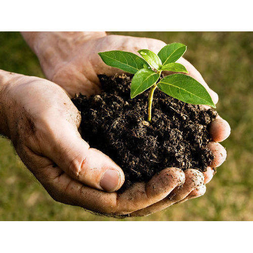 Organic Fertilizer Market Outlook: Investors Still Miss the Big Assessment