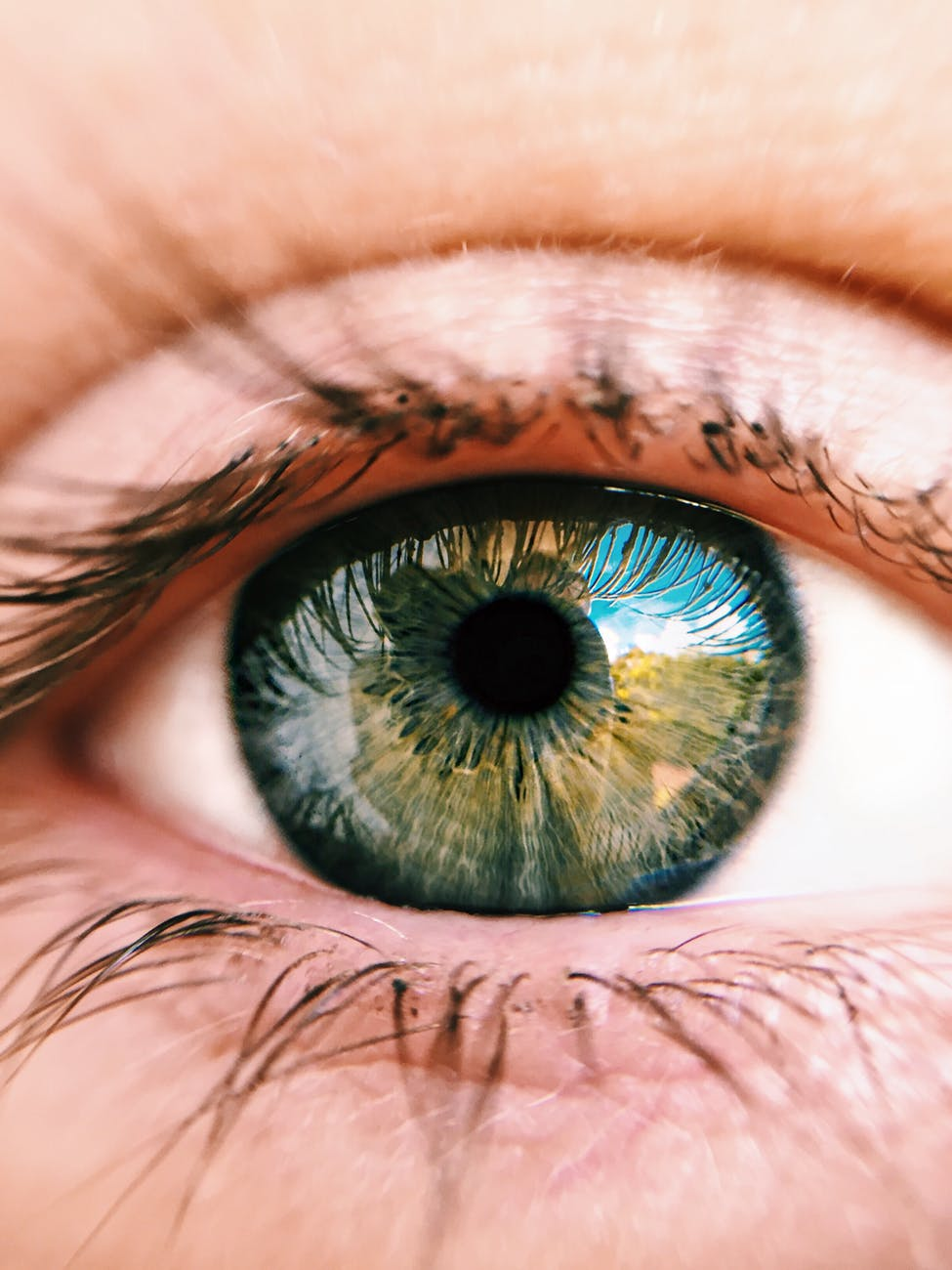 Artificial Eye Market 2019: Overview, Size, Growth, Top Key Players, Analysis, Growth and Trends by Forecast to 2023