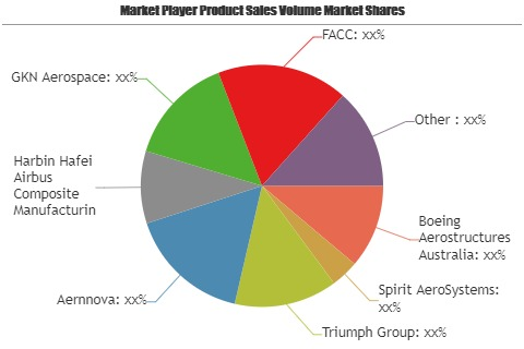 Stay Tuned with the Epic Battle in the Aerospace Control Surface Market | Boeing Aerostructures Australia, Spirit AeroSystems, Triumph