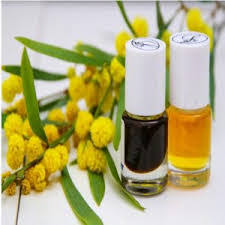 Mimosa Oil Market: Global Key Players, Trends, Share, Industry Size, Growth, Opportunities, Forecast To 2025