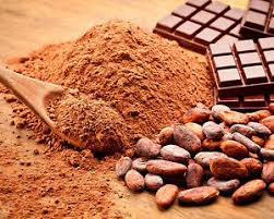 Cocoa Powder Market 2019: Global Key Players, Trends, Share, Industry Size, Segmentation, Opportunities, Forecast To 2024