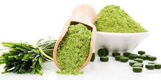 Algae Products Market 2019: Global Key Players, Trends, Share, Industry Size, Segmentation, Opportunities, Forecast To 2025