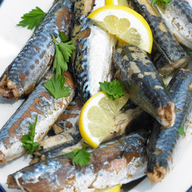 Sardine Fish Market Report, Global Industry Overview, Growth, Opportunities and Forecast 2019-2024