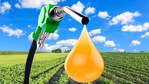 Biodiesel Market 2019: Global Key Players, Trends, Share, Industry Size, Segmentation, Opportunities, Forecast To 2025