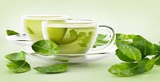 Green Tea Leaves Market Status, Regional Demand and Forecast by 2020-2024: Stash Tea, Yogi Tea, Numi, Organic India