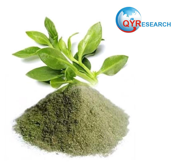 Andrographis Paniculata Extract Upcoming Trends in the next few years