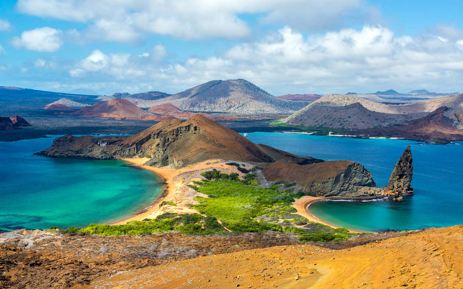 The mangrove areas of the Galapagos archipelago have increased by 25% in the last ten years