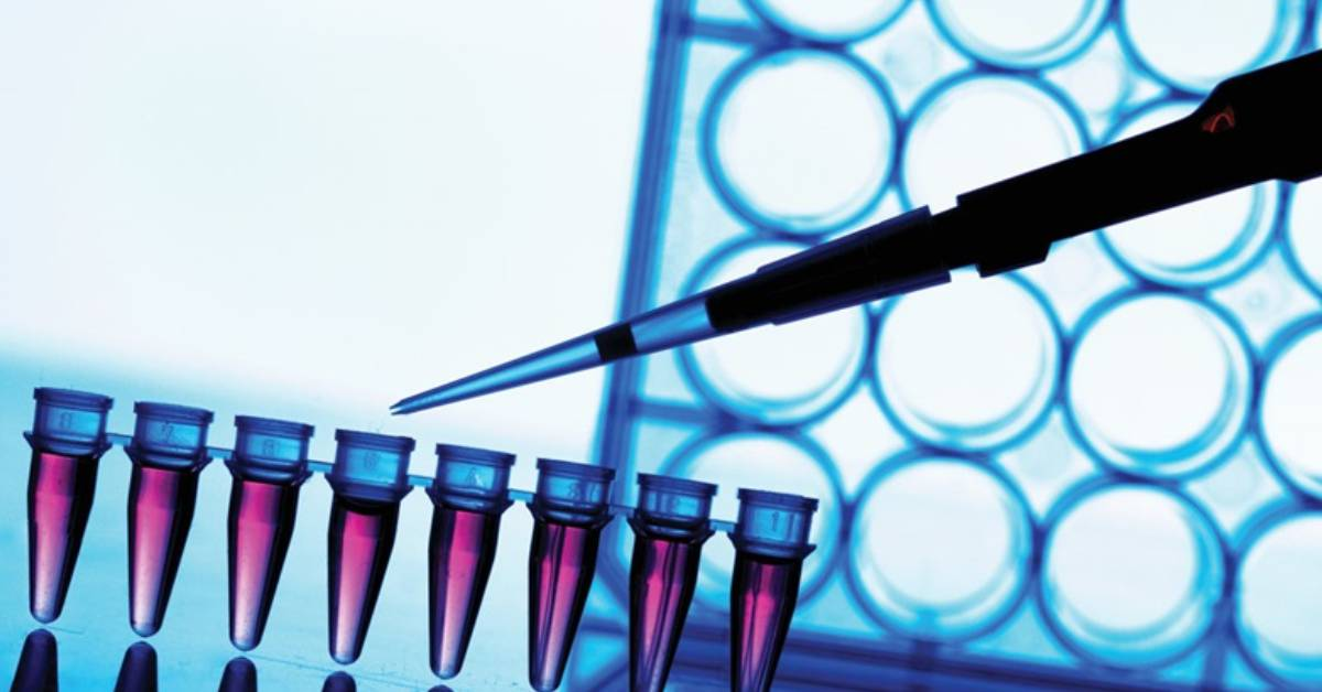 Liquid Biopsy Diagnostic Market - The One Step Diagnostic Test for Cancer
