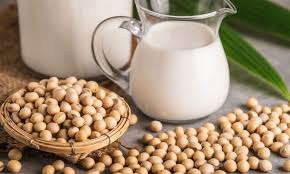 Organic Soymilk Market 2019: Global Key Players, Trends, Share, Industry Size, Segmentation, Opportunities, Forecast To 2025