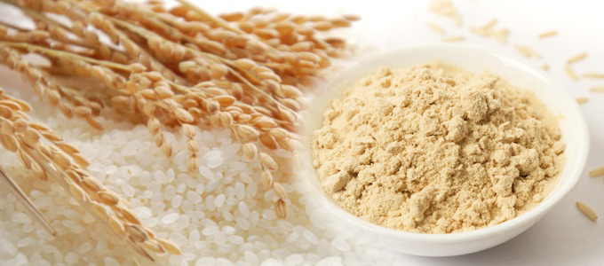 7.1 CAGR | Rice Protein Market Getting Back To Growth | Axiom Foods, Wuxi Jinnong Biotechnology, Anhui Shunxin Shengyuan