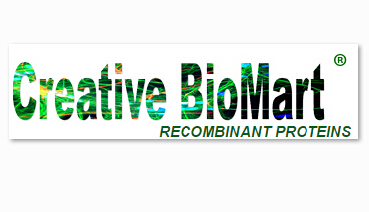 Creative BioMart Provides Large-Scale Protein Production Service