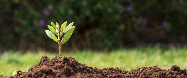 Soil Sampling Service Market Size, Global Demand, Value Share and Key Trend, Comprehensive Analysis and Future Investments by Forecast to 2025