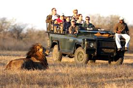 Luxury Safari Tourism Market Overview – Key Futuristic Trends and Competitive Landscape 2025 | Micato Safaris, Singita, Great Plains
