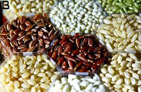 Seed Treatment Market: Global Key Players, Trends, Share, Industry Size, Growth, Opportunities, Forecast To 2025
