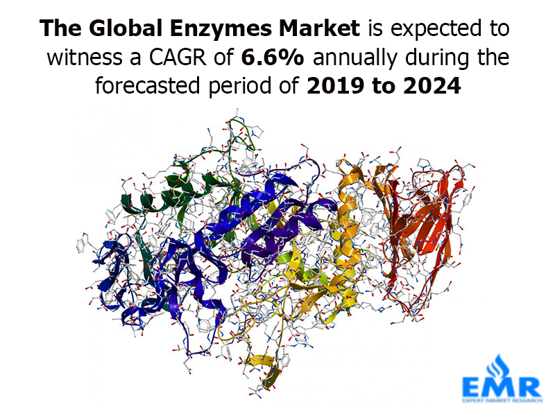 Global Enzymes Market Expected to Witness a CAGR of 6.3% Annually During the Forecasted Period of 2019 to 2024