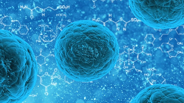 Adoption of Regenerative Medicine to Promote Cell Therapy Market Growth | Global Industry Analysis by Size, Share, Trends, Top Key Players with Strategy Profiling and Regional Revenue Forecast to 2023