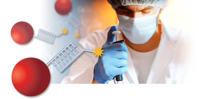 Immunoassay Market Growth, Product Type, Applications, Services and New Technology Brief 2019 | Share Overview, Regional Scope and Future Trends To 2025