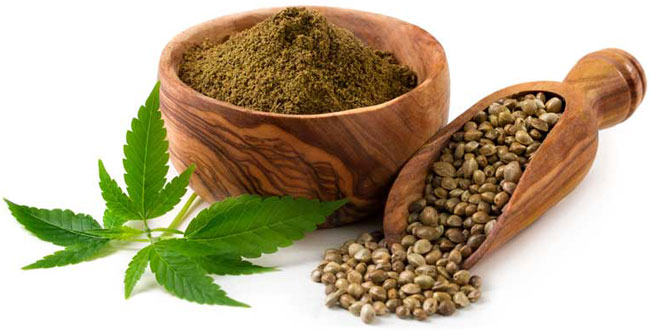 Latest Research Report On Global Hemp Protein Market