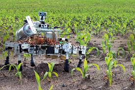 Agricultural AI Market to Witness Huge Growth | Major Giants (Google, Sentient Technologies, Intel, Agribotix)