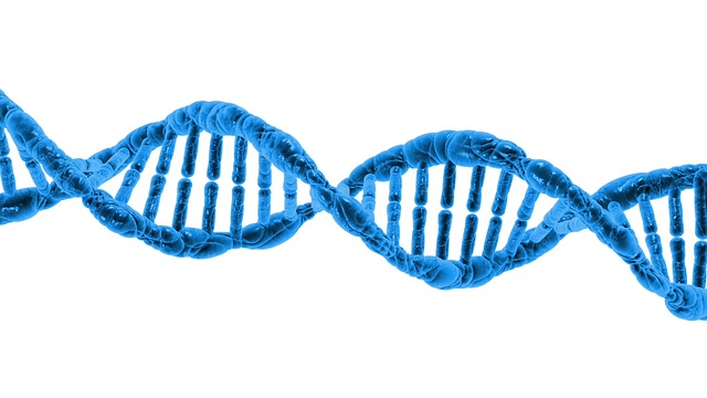 Global DNA Sequencing Market 2019, Size, Share, Growth, Merger, Key Players Analysis, with Strategy Profiling, Regional Revenue, Forecast to 2023