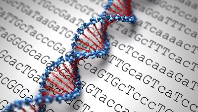 China Genetic Testing Market by Test Type, Disease, Technology, Service Provider, Testing Sample 2019-2024