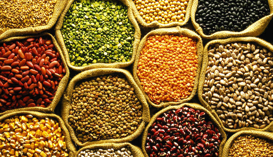 Pulses Market Analysis By Industry Size, Share, Price Trends, Revenue Growth, Development And Demand Forecast To 2024