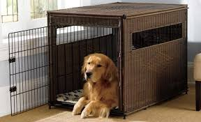 Dog Cages Market Size, Status and Forecast to 2025: Petsfit, Advantek, Delton Pet Supplies, Boyle\'s Pet Housing