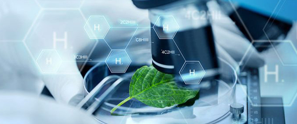 Current Drug Discovery Technologies 2019 Global Share, Trends, Market Size, Growth Opportunities and Forecast to 2025