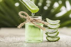 Global Plant Extracts Market 2019 Trends, Market Share, ndustry Sze, Growth, Sales, Opportuntes, Analyss and Forecast To 2024