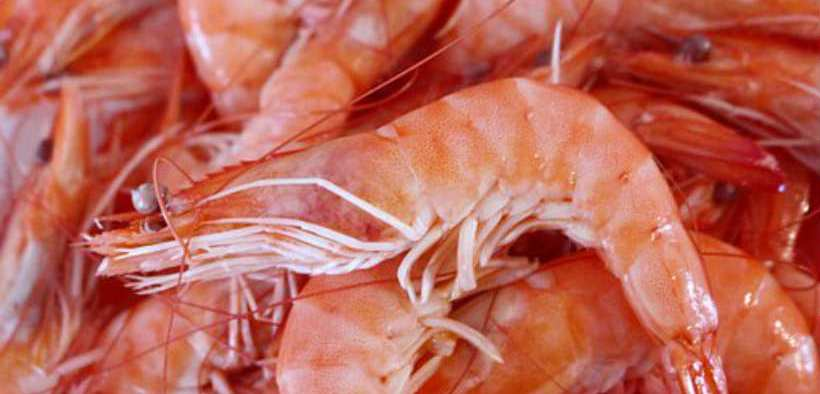 Organic Shrimp Market Forecast To 2025 With Key Companies Profile, Supply, Demand, Cost Structure, And SWOT Analysis