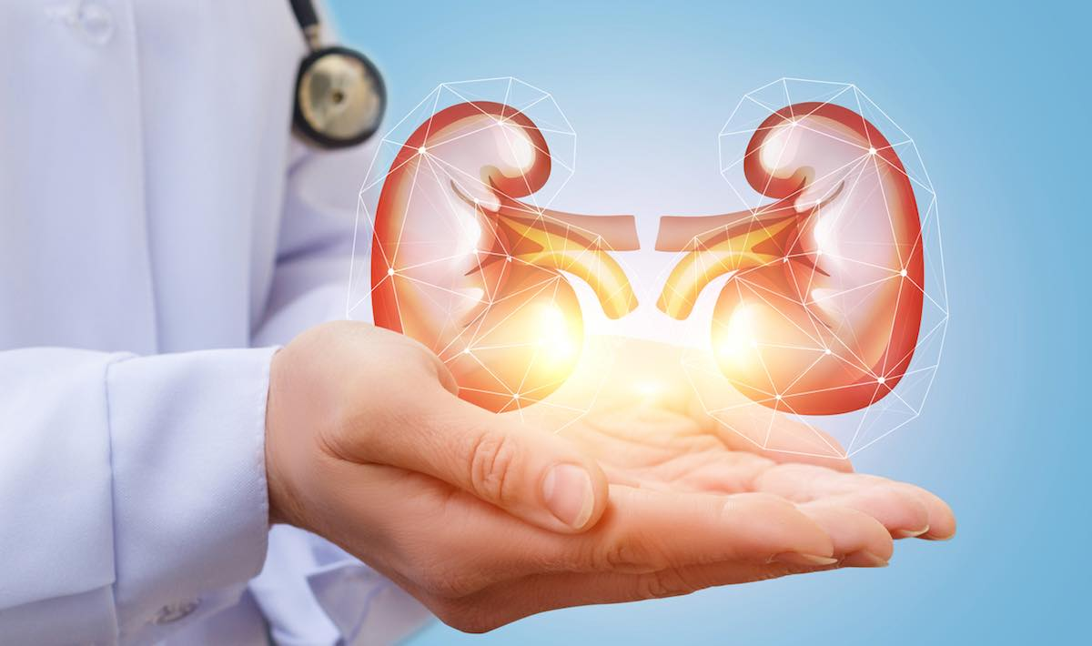 Artificial Kidney Market - Increasing Demand with Industry Professionals by 2025| Xcorporeal, NxStage, Medtronic, DaVita